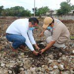 Reforestación en escuela de Hunucmá, por el derecho a un ambiente sano